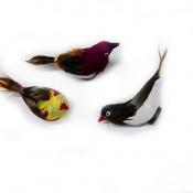 x-3534 Магниты птички